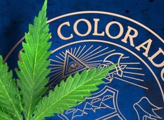 In Colorado: New Marijuana Survey Stirs the Pot