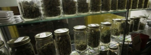 New medical marijuana provisioning center in Mt. Morris offers an elevated experience