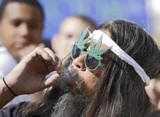California: Marijuana Legalization to hit ballots this November