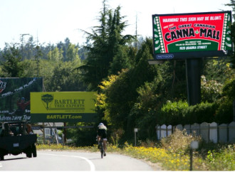Interesting News: 'Canna Mall' aims to be hub of Victoria's marijuana culture
