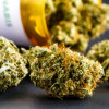 First Bill Dealing With Medical Marijuana Filed Tuesday