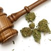 Will Legal Marijuana Flourish or Fold In 2018?
