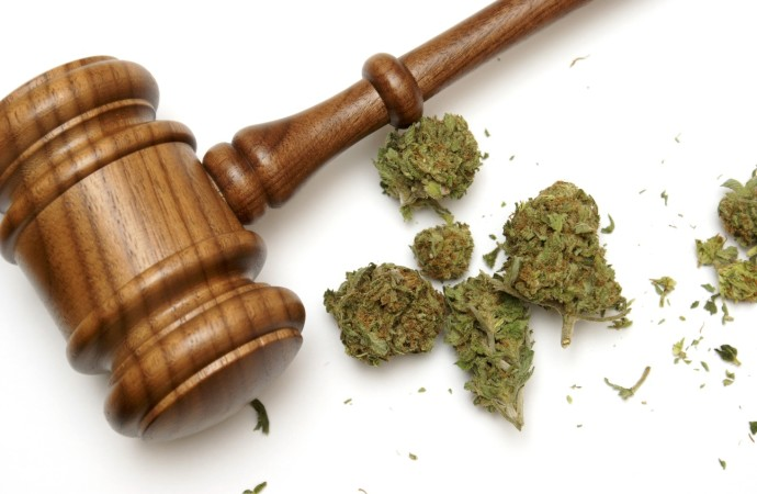 Will Legal Marijuana Flourish or Fold In 2018?