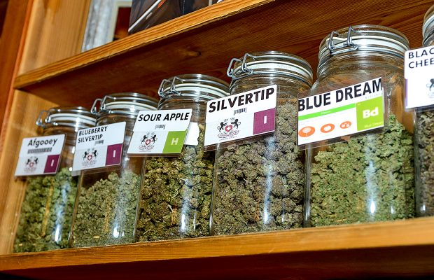 Michigan Unveils New Label for Medical Marijuana