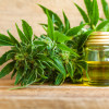 Idaho Bill Would Allow Use Of Cannabis-derived CBD Oil