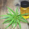 Cannabis oil: It's Medicine And It's Time