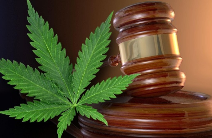 New Medical Marijuana Rules Go Into Effect In Montana