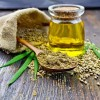 CBD Oil: What No One Is Talking About