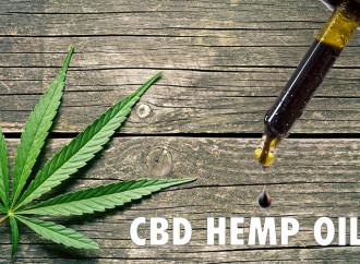 Amazing Benefits Of CBD Hemp Oil For Chronic Illness