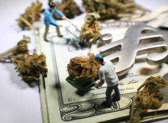 Could Africa Be The Next Big Cannabis Market?