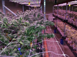 Peek inside the Southern University medical marijuana licensee's operation in Baker