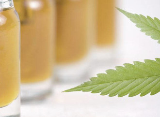 Are CBD and Hemp Oil the Same?